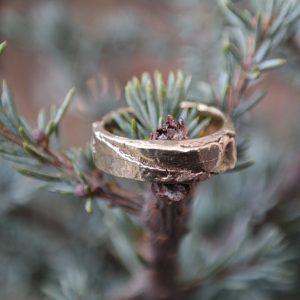 guld, sølv, ring, bark