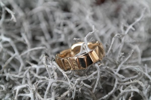 guld, sølv, ring, brikker